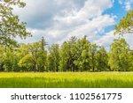 green grass meadow in the... | Shutterstock . vector #1102561775