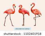 vector hand drawn collection of ... | Shutterstock .eps vector #1102601918