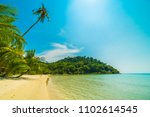 beautiful tropical beach and... | Shutterstock . vector #1102614545