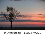 single tree in front of sunrise ... | Shutterstock . vector #1102679222