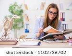 student examining animal... | Shutterstock . vector #1102736702