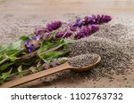 chia seeds healthy superfood... | Shutterstock . vector #1102763732