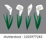 calla flowers in the style of... | Shutterstock .eps vector #1102977182