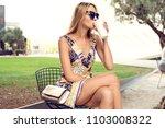 summer sunny lifestyle portrait ... | Shutterstock . vector #1103008322
