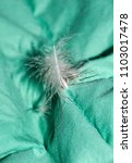 feather sticking out of duvet | Shutterstock . vector #1103017478