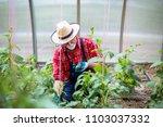 farm fresh veggies | Shutterstock . vector #1103037332