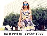 summer sunny lifestyle portrait ... | Shutterstock . vector #1103045738