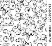 hand drawing botanical black...   Shutterstock .eps vector #1103049068