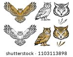 set of different owls. owl logo.... | Shutterstock .eps vector #1103113898
