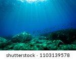 underwater scene of seabed in... | Shutterstock . vector #1103139578