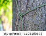 rope tied around tree trunk... | Shutterstock . vector #1103150876
