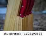 knife block knives cutting... | Shutterstock . vector #1103193536