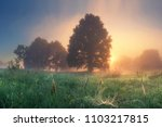 bright dawn in early morning on ... | Shutterstock . vector #1103217815