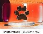 golden paw of pet icon on white ...