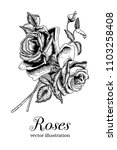 roses. vector illustration in... | Shutterstock .eps vector #1103258408