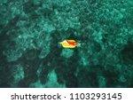 summer lifestyle portrait of...   Shutterstock . vector #1103293145