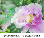 the beautiful abstract complex...   Shutterstock . vector #1103343455