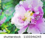 the beautiful abstract complex...   Shutterstock . vector #1103346245