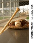 baseball bat and glove on the... | Shutterstock . vector #110337455