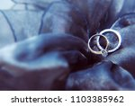 white and yellow gold solitaire ... | Shutterstock . vector #1103385962