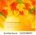 autumn background with leaves.... | Shutterstock .eps vector #110338892
