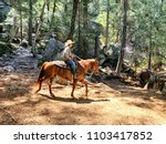 Small photo of Man on a horse in the woods