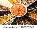 indian beans pulses lentils... | Shutterstock . vector #1103507042