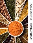 indian beans pulses lentils...   Shutterstock . vector #1103515922