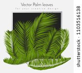 isolated vector palm leaves.... | Shutterstock .eps vector #1103516138