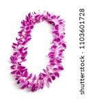 double strand hawaii flowers... | Shutterstock . vector #1103601728