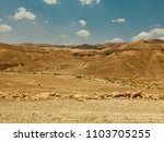 desert of the negev in israel.   Shutterstock . vector #1103705255