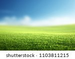 field of spring grass  shallow... | Shutterstock . vector #1103811215