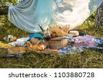 picnic lunch meal outdoors park ... | Shutterstock . vector #1103880728
