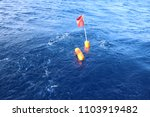 Small photo of diamondback squid gearing. this fishing gearings are used to catch giant diamondback squids.