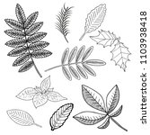 collection of leaves. vector... | Shutterstock .eps vector #1103938418