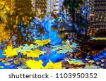 autumn maple leaves in puddle... | Shutterstock . vector #1103950352
