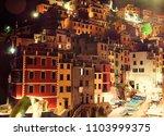 riomaggiore village by night ... | Shutterstock . vector #1103999375
