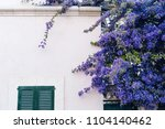house facade with purple flowers | Shutterstock . vector #1104140462