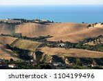 panoramic view of olive groves... | Shutterstock . vector #1104199496