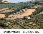 panoramic view of olive groves... | Shutterstock . vector #1104200102