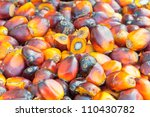 pile of palm oil fruits | Shutterstock . vector #110430782