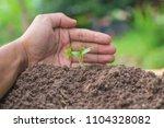 hands of farmer growing and... | Shutterstock . vector #1104328082