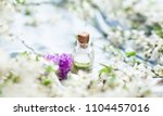 bottle of aroma oil with rose | Shutterstock . vector #1104457016