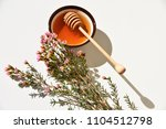 pink manuka tree flower and...   Shutterstock . vector #1104512798