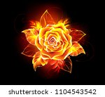 blooming rose from fire and... | Shutterstock .eps vector #1104543542