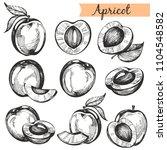 vector collectiom with hand... | Shutterstock .eps vector #1104548582