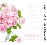 tea roses bunch isolated on... | Shutterstock . vector #110462255