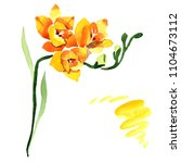 yellow freesia. floral... | Shutterstock . vector #1104673112
