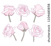 rose flowers linear graphic... | Shutterstock .eps vector #1104680858