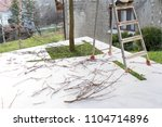 cutting branches at home | Shutterstock . vector #1104714896